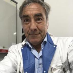 Prof. Luigi Gatta